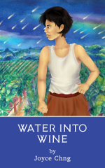 Water into Wine book cover: Main character standing in front of a vineyard