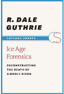 Ice Age Forensics