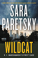 Wildcat book cover: a view of downtown Chicago.