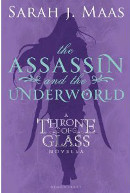 The Assassin and the Underworld book cover