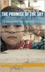 The Promise of the Sky book cover: a young Indian boy, looking through barbed wire.