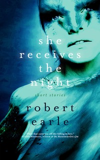 Cover for She Receives the Night. A stylized picture of a woman's face.
